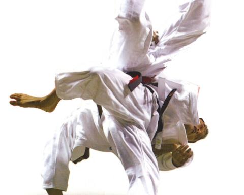 judo-throw
